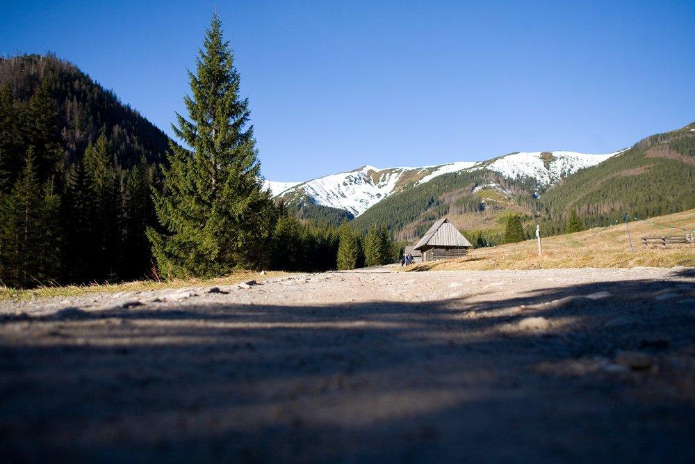 Droga na Dolinę Chochołowską